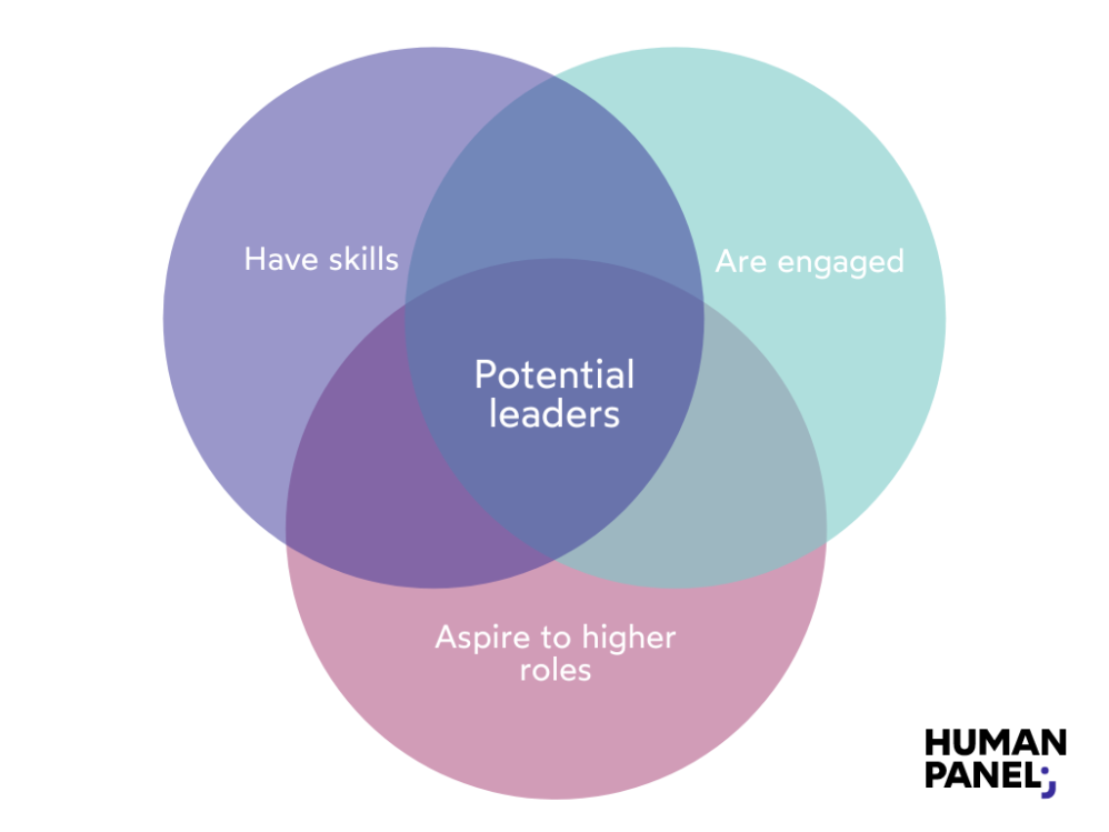 What makes a potential leader? Skills, engagement and aspiration to higher role.